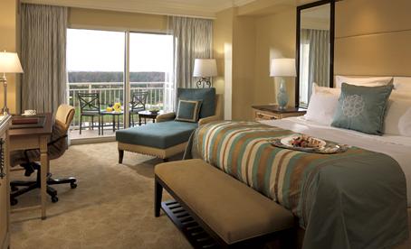 """""""Ritz Carlton Orlando"""""""